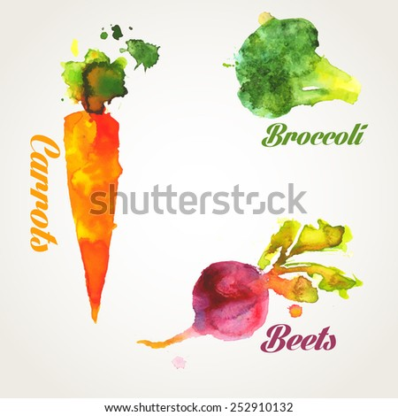 vegetables set watercolor hand work, carrots, beets, broccoli - stock photo