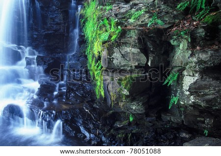 Vegetation grows along a dark cliff of Powerhouse Falls in northern Michigan