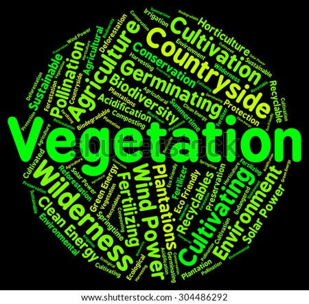 Vegetation Word Meaning Plant Life And Botany