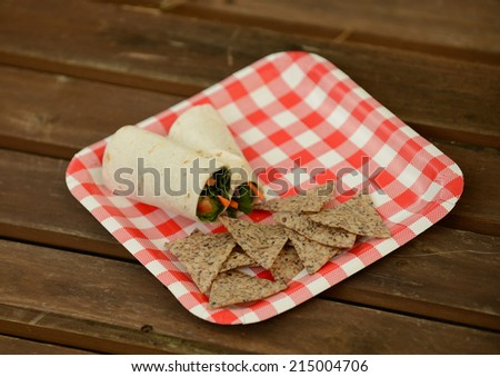 veggie wrap for picnic with red and white plate - stock photo