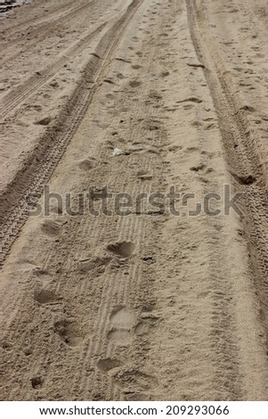 vehicle tracks on a beach