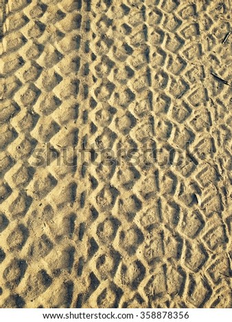 Vehicle tyre tracks in dry sand