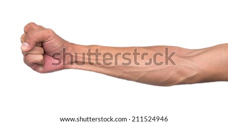 Veins and tendons in the arm - stock photo