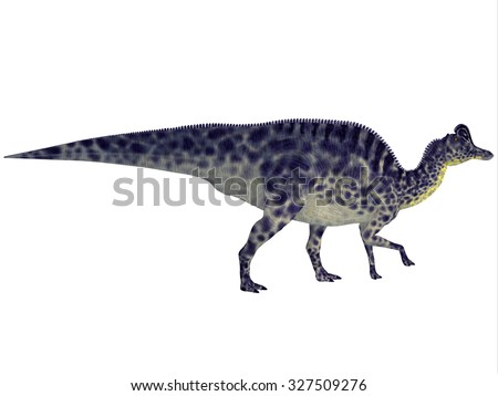 Velafrons Dinosaur Profile - Velafrons was a large herbivorous hadrosaur dinosaur that lived in Mexico during the Cretaceous Period.