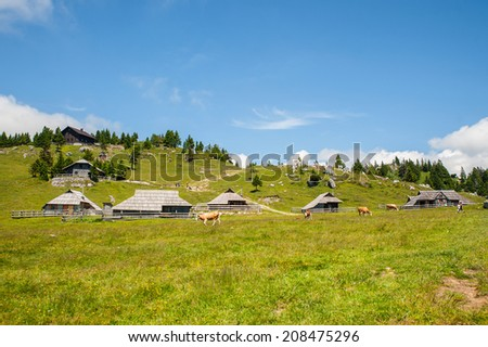 Velika Planina hill, tourist attraction and destination, Slovenia