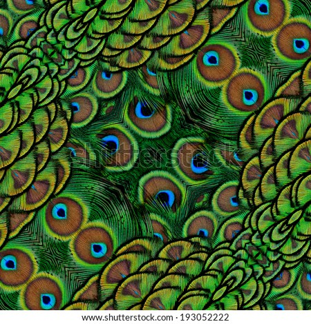 Velvet Green background texture made from indian peacock feathers texture