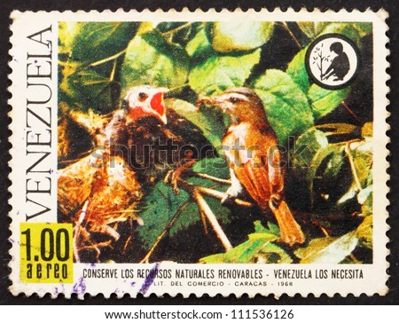 VENEZUELA - CIRCA 1968: a stamp printed in the Venezuela shows Red-eyed Vireo Feeding Young Bronzed Cowbird, Nature Conservation, circa 1968 - stock photo