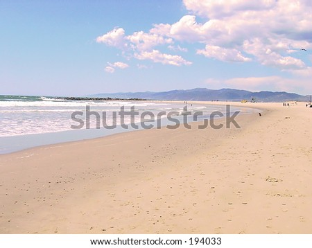Venice Beach - stock photo
