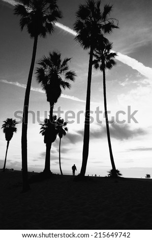 Venice Beach Sunset vintage retro black and white post processed. Tropical summer vacation and travel concept  - stock photo