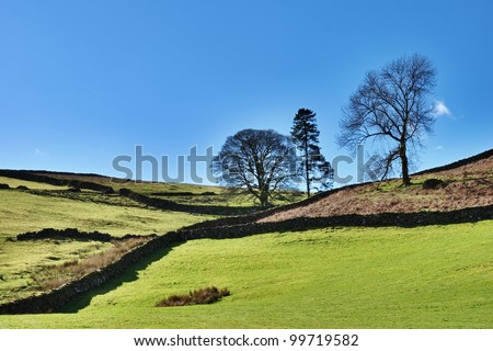 Verdant green agricultural farmland bounded by rustic stone walls in the Longsleddale region of the English Lake District - stock photo