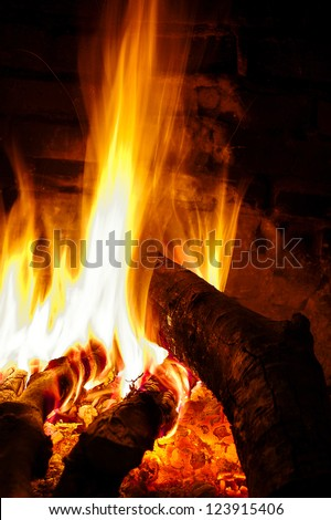 Vertical close-up of fire in a fireplace