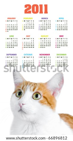 Vertical color calendar for 2011 year with cute red and white cat