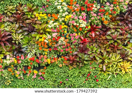 Vertical Garden with various tropical plants and flower growing in a pattern - stock photo