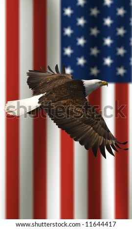 vertical image of bald eagle flying in front of the American flag