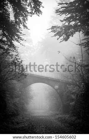 Vertical monochrome shot of a road going under the bridge in a scary, fairytale-like autumn forest covered in fog - stock photo