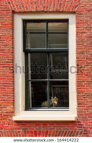 Vertical oriented image of cat on windowsill of red brick house in Amsterdam, netherlands. - stock photo