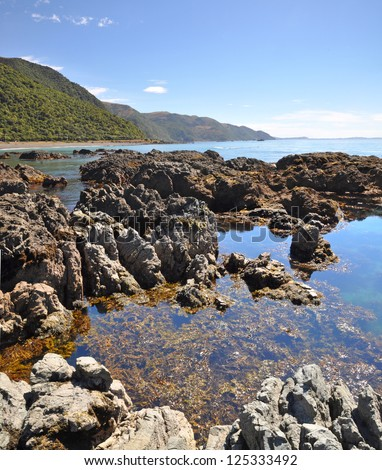 Vertical panoramic view of the rock pools of Kaikoura - a popular seal colony and whale watching tourist destination on the east coast of the South Island in New Zealand. - stock photo