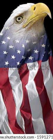 vertical patriotic banner of a bald eagle combined with US flag  - stock photo