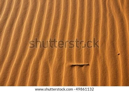 Vertical pattern in the desert - stock photo