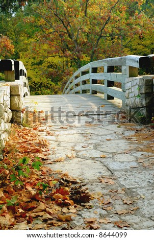 Vertical photograph of wooden footbridge leading into forest in autumn. - stock photo