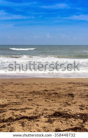 vertical scenic beach and ocean landscape in Florida - stock photo