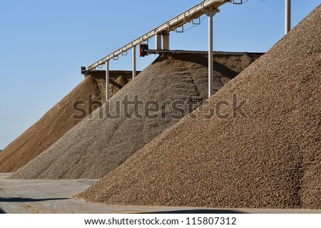 Very large piles of almonds ready for processing, different varities
