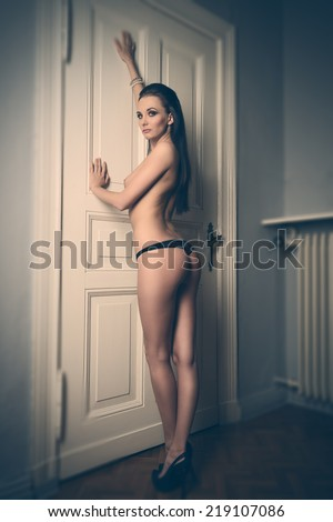 very sexy naked woman with long brown hair posing near door, showing her perfect backside and wearing only lace panties  - stock photo