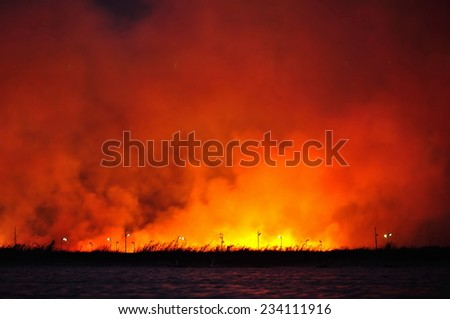Very strong fire in the meadow, unfocused - stock photo