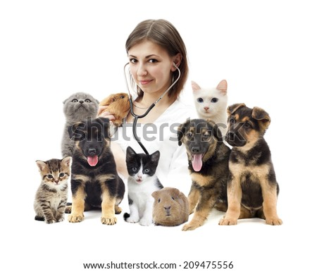 vet and a group of pets - stock photo
