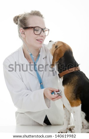 vet with pet dog - stock photo