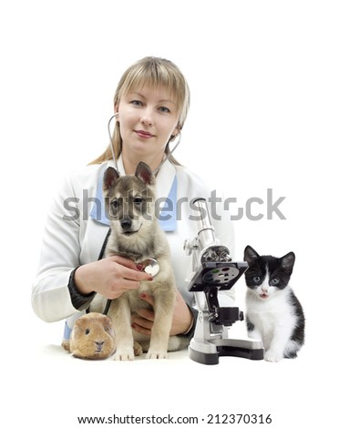 veterinarian and Pets - stock photo
