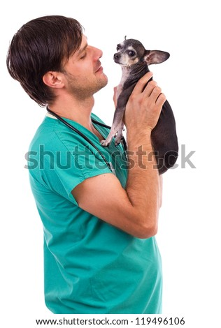 Veterinarian doctor holding a  chihuahua dog against white background - stock photo