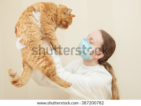 Veterinarian examining muzzle of a cat while doing checkup at clinic. - stock photo