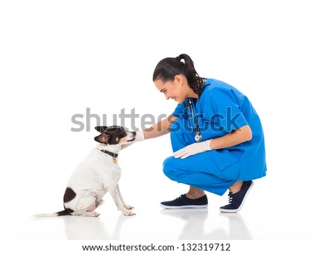 veterinarian female doctor playing with pet dog - stock photo
