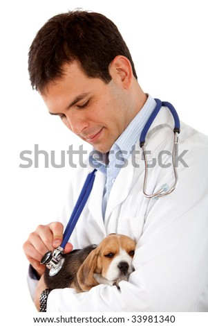 Veterinarian holding a cute little puppy isolated