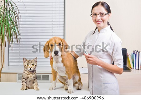 Veterinarian measures the body temperature of a dog and kitten - stock photo