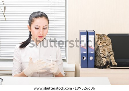 Veterinarian preparing to inspect a cat