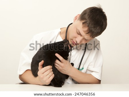 Veterinarian surgeon doctor making a checkup of a black cat - stock photo