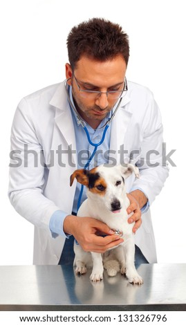 Veterinarian with jack russell terrier - stock photo