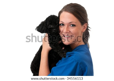 Veterinary assistant holding pet poodle isolated on white background with copy space. - stock photo
