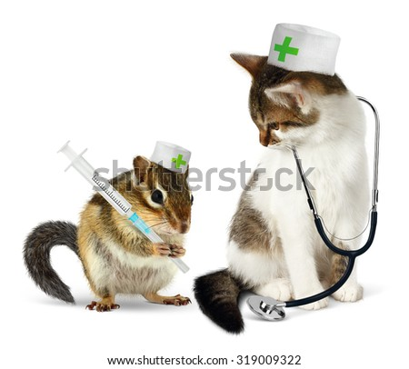 Veterinary concept, funny chipmunk  and cat with phonendoscope and syringe on white - stock photo