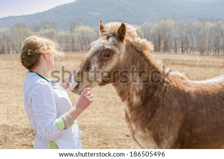 Veterinary service on the business trip in the area's farms . Vet speaks tenderly and yearling colt seems to understand ... - stock photo