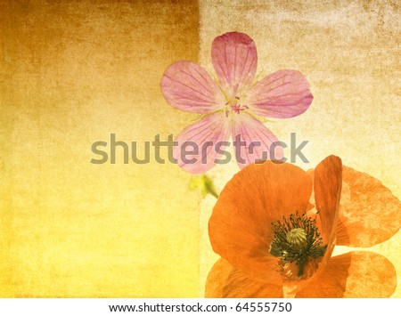 vibrant background image with floral elements - stock photo