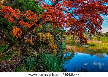 Vibrantly Beautiful Fall Foliage Over a Crystal Stream at Lost Maples State Park, Texas - stock photo