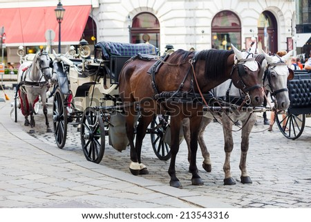 VIENNA, AUSTRIA - AUGUST 4, 2013: Traditional horse-driven carriage at Hofburg palace, Vienna, Austria - stock photo