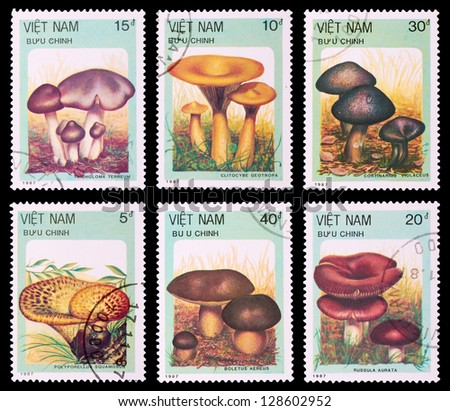 VIETNAM - CIRCA 1987: A set of postage stamps printed in VIETNAM shows mushrooms, series, circa 1987