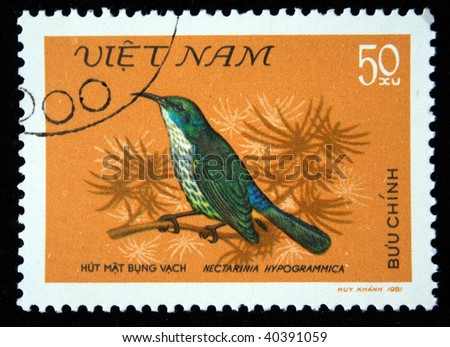 VIETNAM - CIRCA 1981: A stamp printed by Vietnam shows the Bird  Blue-napped Sunbird - Nectarinia hypogrammica, stamp is from the series, circa 1981
