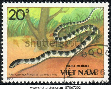 VIETNAM - CIRCA 1988: A stamp printed in VIETNAM  shows  a Bungarus candidus linne, series, circa 1988 - stock photo