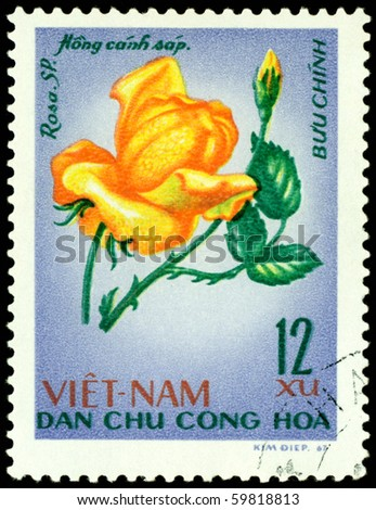 VIETNAM - CIRCA 1967: a stamp printed in Vietnam shows image of a Rose with the inscription Hong canh sap, series, circa 1967