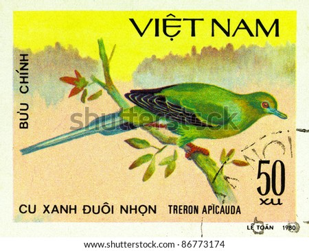 VIETNAM - CIRCA 1980: A stamp printed in Vietnam shows Pin-tailed Green Pigeon or Treron apicauda, series devoted to the birds, circa 1980